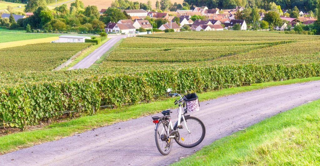 Biking in Champagne