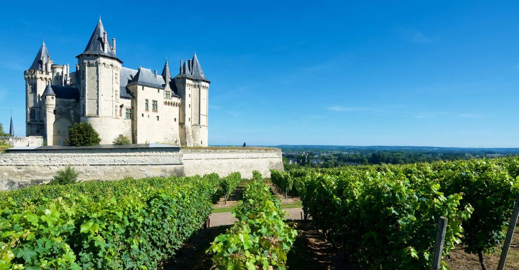 wineyards of Loire Valley