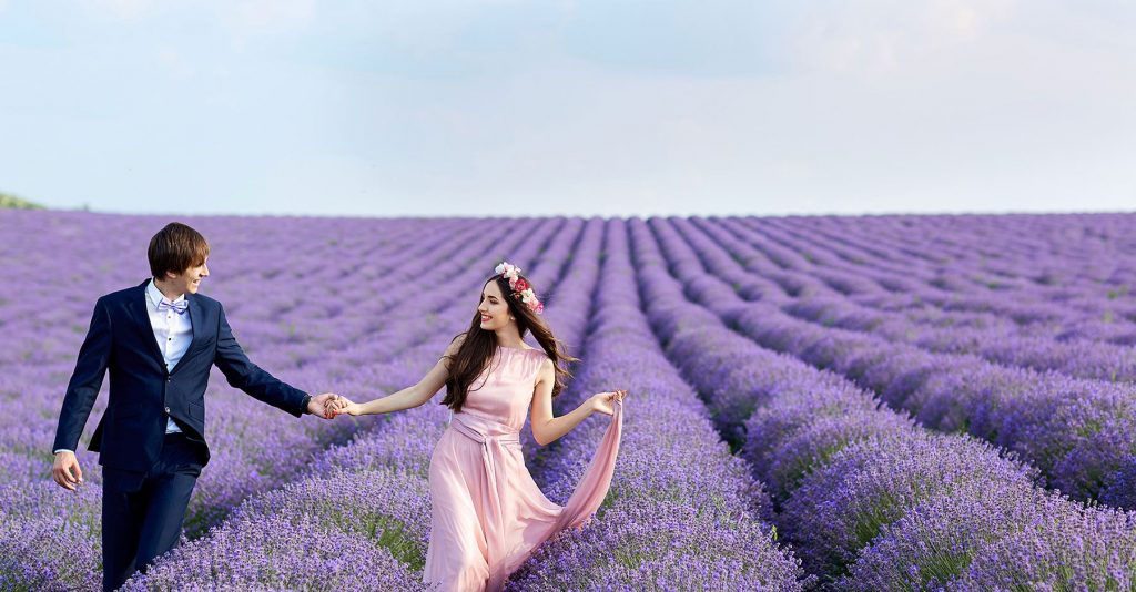 a couple into lavender fields